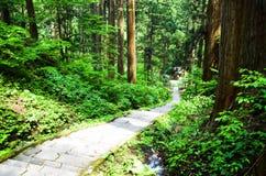Aproximação ao santuário de Dewa, Yamagata, Japão imagens de stock