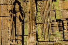 Apsara, das in einer Tempelsteinwand in Angkor Wat schnitzt lizenzfreies stockbild