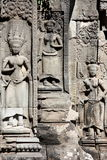 Apsara no templo de Ta Prohm, Camboja Fotografia de Stock