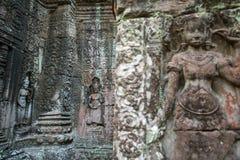 Apsara stencarvings på väggen av den Angkor Ta Prohm templet Arkivfoton