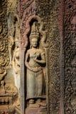 Apsaras резное изображение старое искусства кхмера на стене в виске Prohm животиков Стоковая Фотография