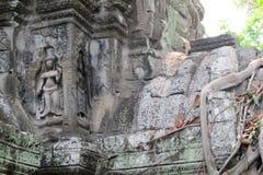 Cambodia Angkor Ta Prom Apsara Bas Relief stock photo