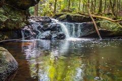 Apshawa spadki w podmiejskiej natury prezerwie w NJ otaczają bujny zieleni lasem na lata popołudniu obraz stock