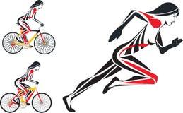 Aptidão e funcionamento da bicicleta Imagens de Stock Royalty Free