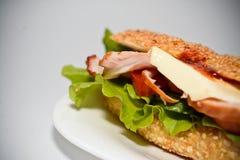 Aptitgamburger royaltyfri fotografi