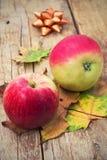 Aptitretande äpple två Royaltyfria Bilder