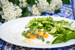 Aptitretande förvanskade ägg med kålsallad Fotografering för Bildbyråer