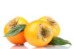 aptitretande green låter vara persimmons tre Royaltyfri Foto