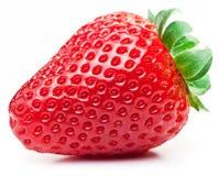 Aptitretande jordgubbe på en vit royaltyfri foto