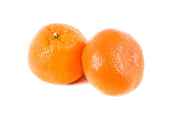 aptitretande mandarine Royaltyfria Foton
