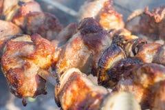 Aptitretande skivor av stekgriskött på gallret över kol fotografering för bildbyråer