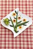 Aptitretareplatta med rå grönsaker Arkivfoto