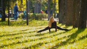 Aptitud joven Exercising modelo femenino en un prado en el parque del otoño, concepto de las actividades al aire libre de los dep Fotos de archivo