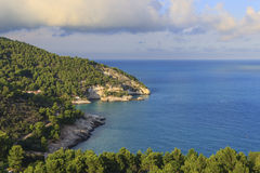 Apula coast,Gargano National Park: Pungnochiuso beach. Vieste,Italy. Royalty Free Stock Image
