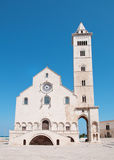 apulia大教堂意大利trani 库存照片