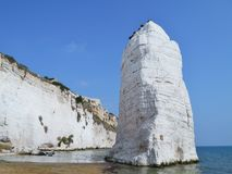 Apulia海岸在意大利 免版税库存照片