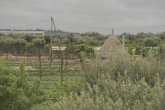 Apulia, το Murgia, η επαρχία Apulian Ιταλία Στοκ Εικόνες