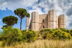 apulia castel del意大利monte 图库摄影