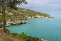 Apulia coastGarganonationalpark: Baia di Campi strand, Vieste-ITALIEN Arkivfoton