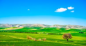 Apulia countryside view rolling hills landscape. Murge Poggiorsi. Apulia countryside view, rolling hills and green fields landscape. Murge Poggiorsini, Bari Royalty Free Stock Photos