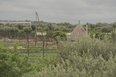 Apulia, The Murgia, the Apulian countryside. Italy. Stock Photo