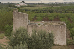 Apulia, The Murgia, the Apulian countryside. Italy. Royalty Free Stock Images