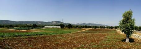Apulian Landschaft Lizenzfreies Stockfoto