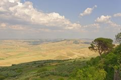 Apulien, Italien: über traditioneller Landschaft heraus schauen, Bari-Provinz lizenzfreie stockfotografie
