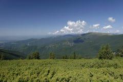 Apuseni山风景  库存照片