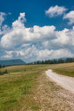 Apuseni Mountains Stock Photos