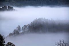 Apuseni mountains, Romania - misty autumn morning Stock Image
