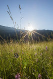 Apuseni  Mountains sunrise Royalty Free Stock Photography