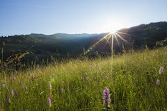 Apuseni  Mountains sunrise Royalty Free Stock Image
