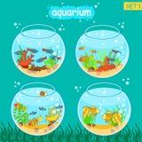 Aquário ajustado com peixes e decoração Grupo de Fishbowl Imagens de Stock