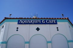 Aquário e café Fotografia de Stock Royalty Free