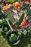 Aquário para beringelas. Foto de Stock