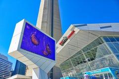 Aquário recentemente construído de Ripleys em Toronto Canadá foto de stock