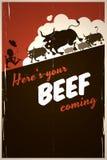Aquí está su carne de vaca   Fotografía de archivo libre de regalías