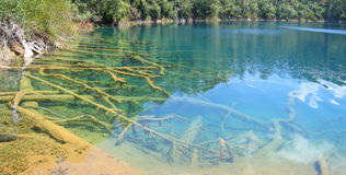 Aqua Azul, Lagunas de Montebello, Mexique, panorama Photographie stock