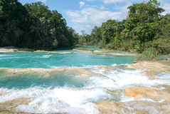 Aqua Azul waterfall on Chiapas Stock Image