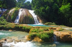 Aqua Azul waterfall, Chiapas, Mexico. Aqua Azul, waterfalls situated in the tropical rainforest of Chiapas, Mexico Stock Photos