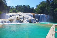 Aqua Azul waterfall, Chiapas, Mexico. Aqua Azul, waterfalls situated in the tropical rainforest of Chiapas, Mexico Stock Photo