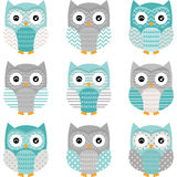 Aqua Grey Cute Owl Collections Fotografia de Stock