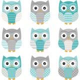 Aqua Grey Cute Owl Collections Fotografía de archivo