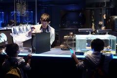 Aqua Lab, Beobachten und züchtende Quallen Zwei Kinder, welche die Laborarbeit aufpassen lizenzfreies stockbild