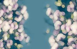 Aqua menchia zamazujący kwiecisty tło, rama Fotografia Royalty Free