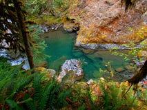 Aqua Nawadnia Fotografia Stock