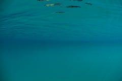 Aqua Water in Tropical Lagoon Royalty Free Stock Photography