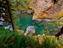 Aqua Waters. South Santiam River at House Rock Campground near Upper Soda, OR stock photography