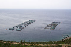 Aquaculture. In a deep sea of Peloponesse, Greece Stock Photography